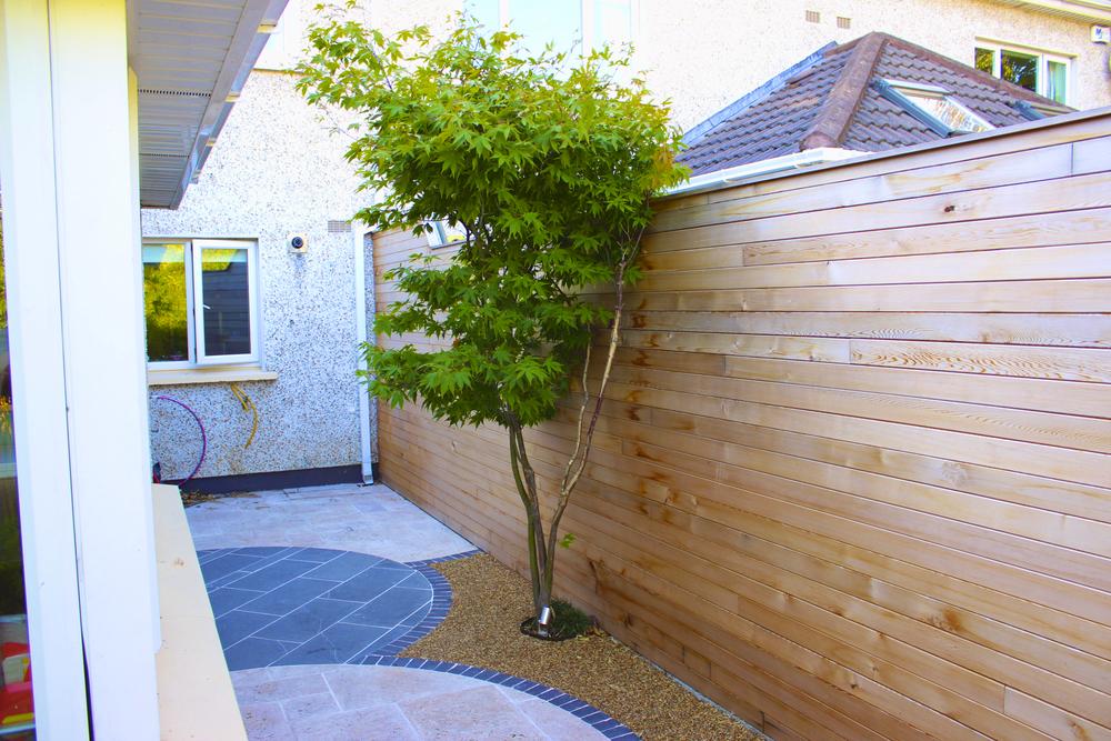 Cedar fence panelling