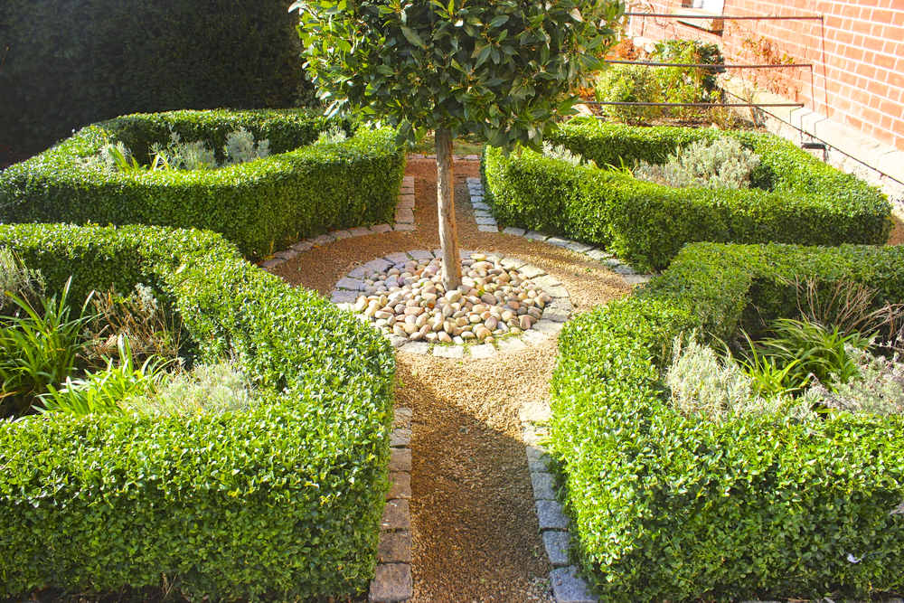 Front garden parterre amazon landscaping for Garden design amazon
