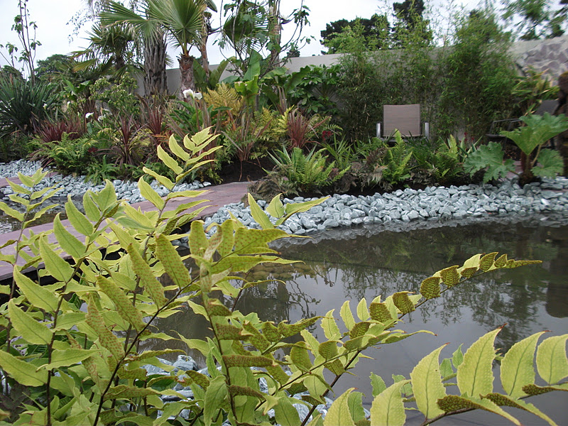 pond in Amazon Rainforest show garden