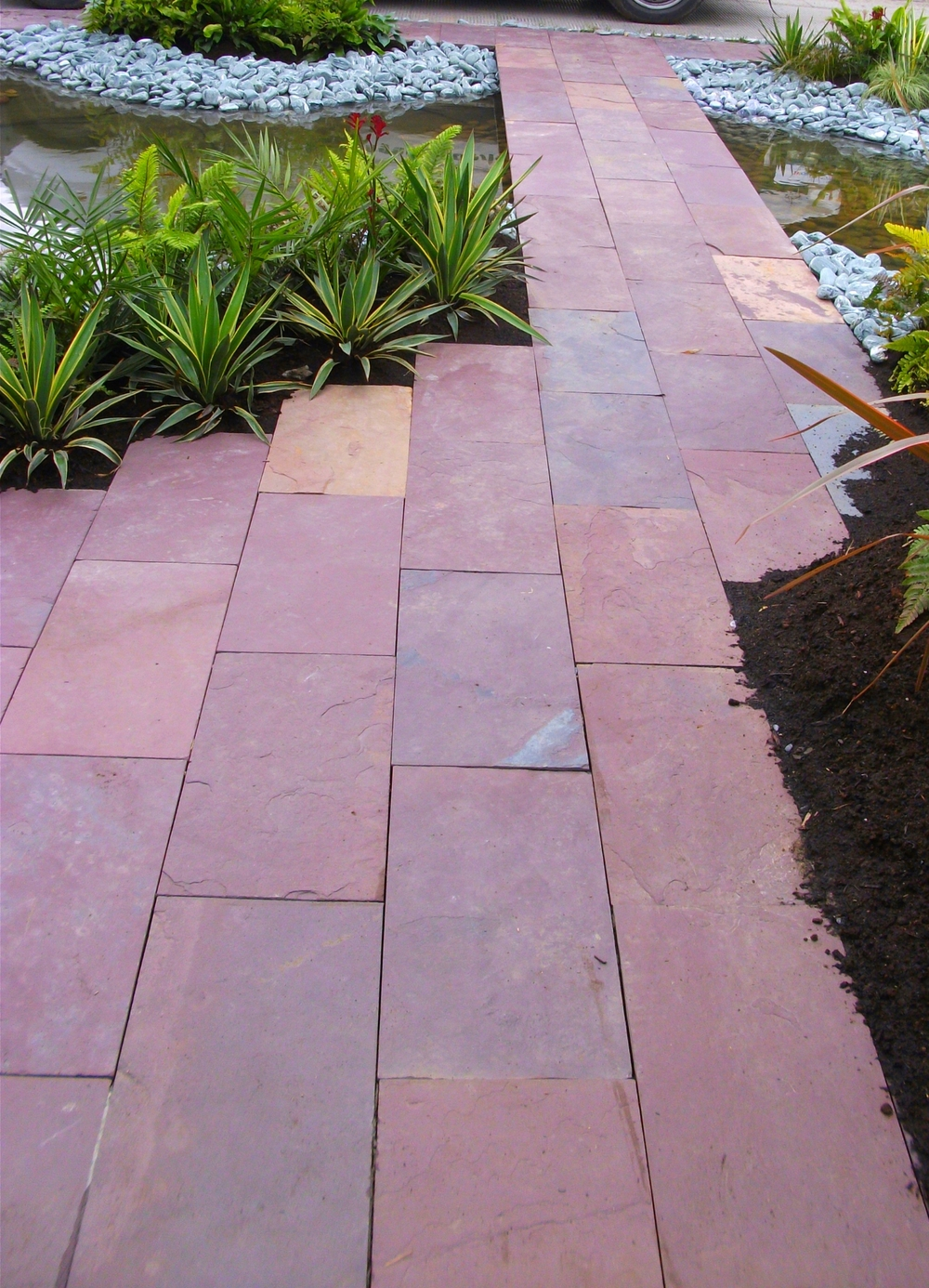 Amazon Bloom garden 'Indian Plum Slate'.jpg
