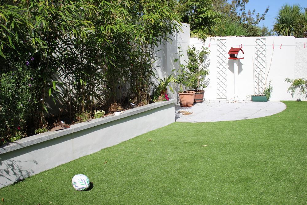 Green Garden Grass