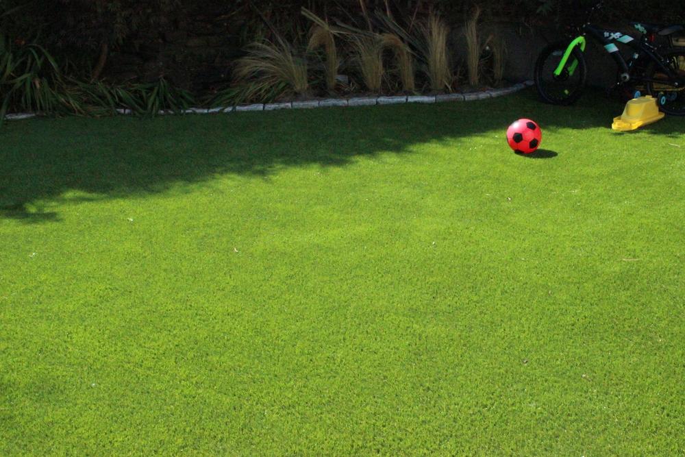 'Finesse' Lawn