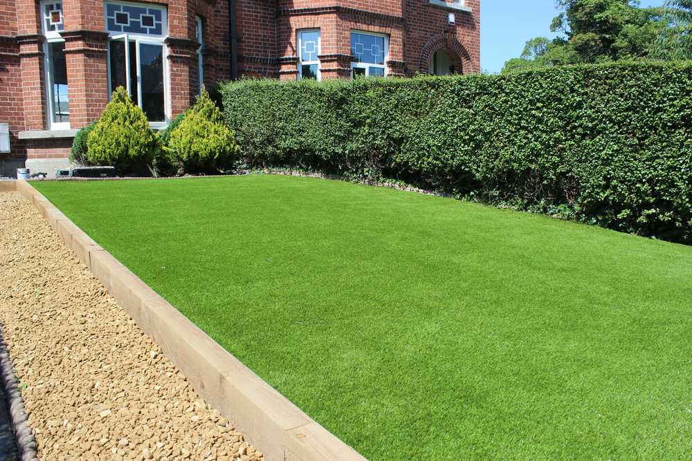 low maintenance lawn