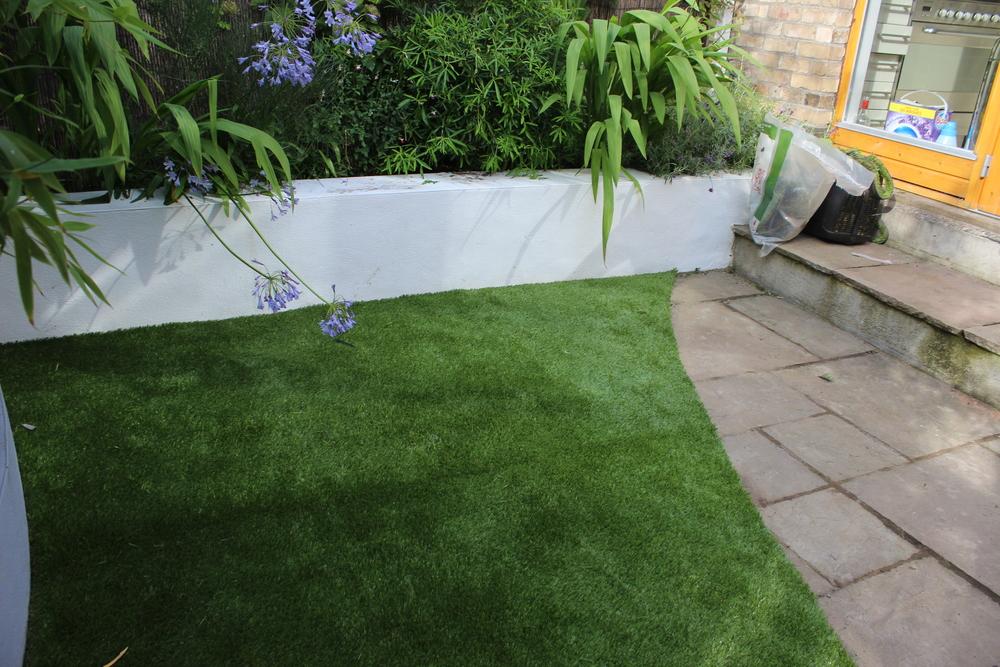 Garden Grass Lawn
