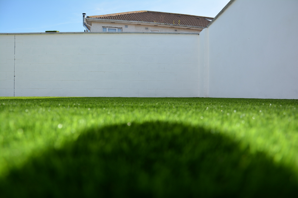 shaded lawn turf