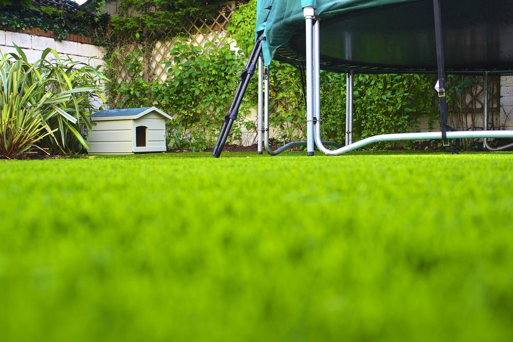 TigerTurf Lawn turf