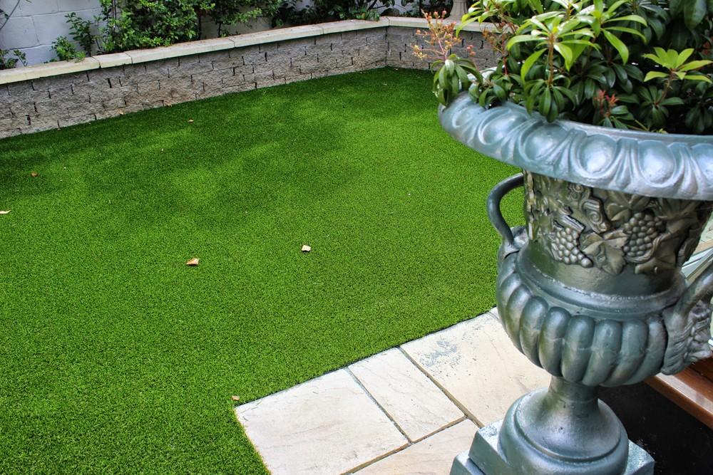 nice Garden lawn