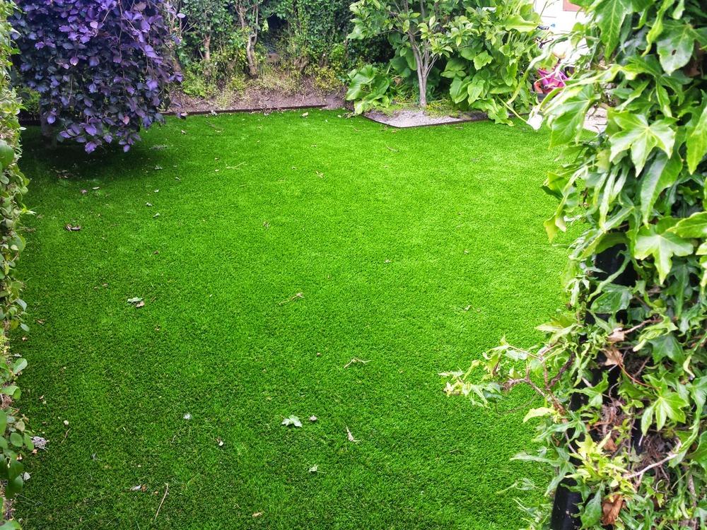 front garden grass