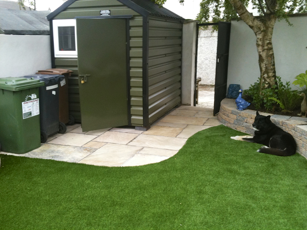 shed and lawn