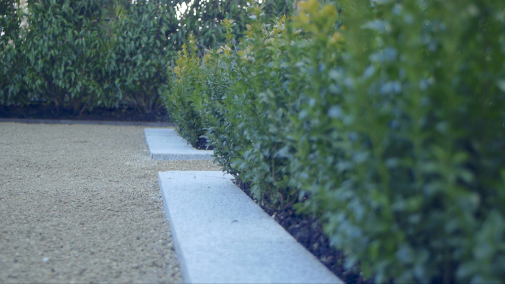 Buxus and gravel