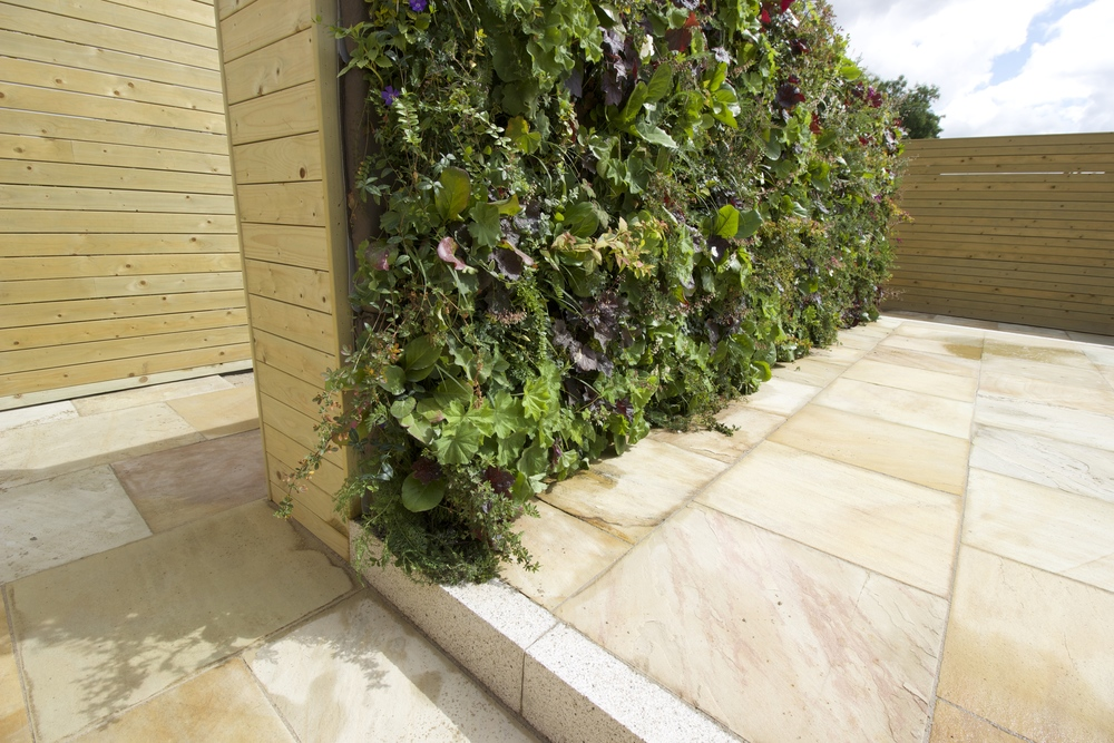 Profile of living wall
