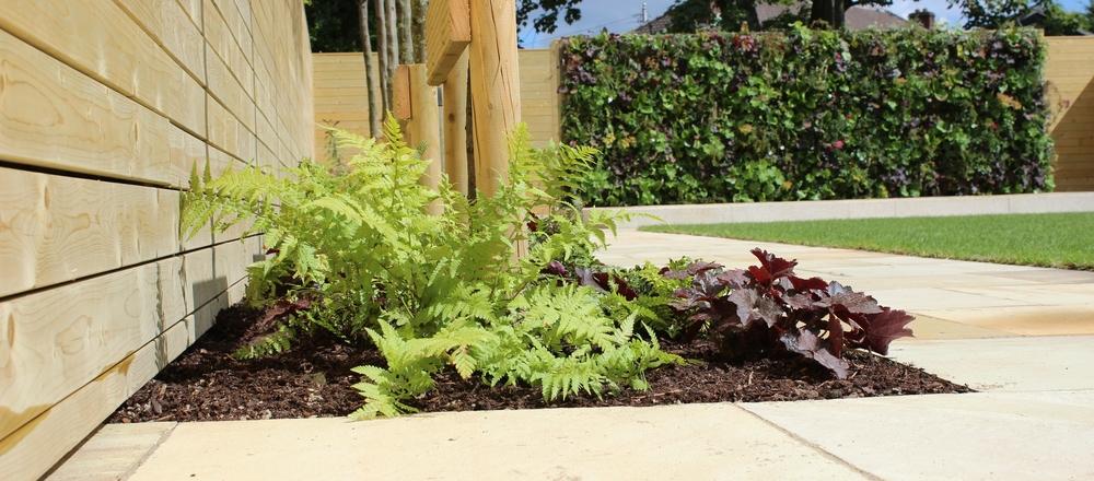 Garden Design featuring Living Green walls.jpg