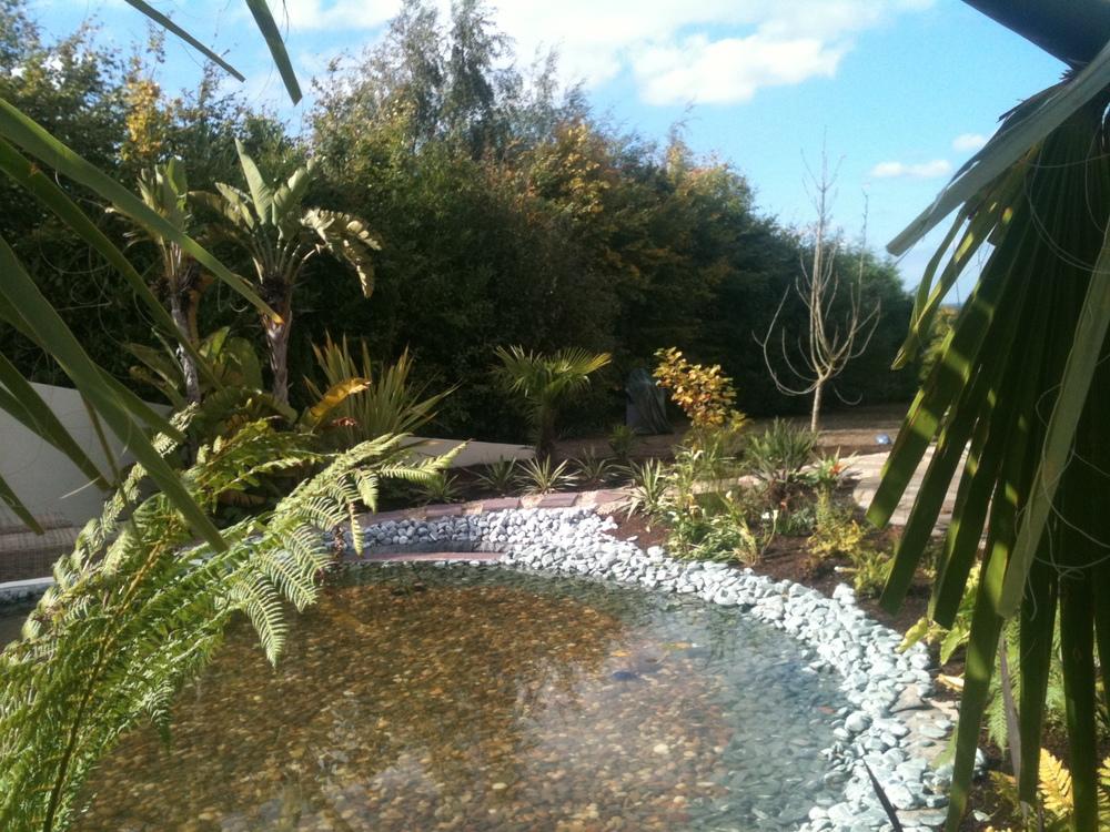 pond garden dublin.JPG