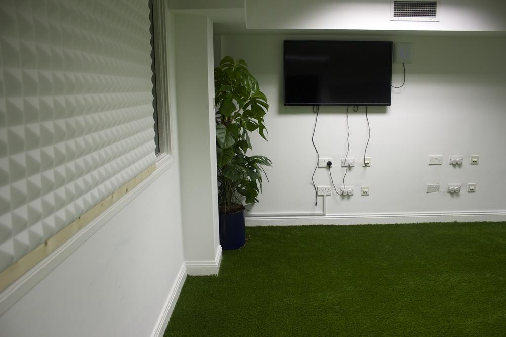 Garden Grass lawn inside