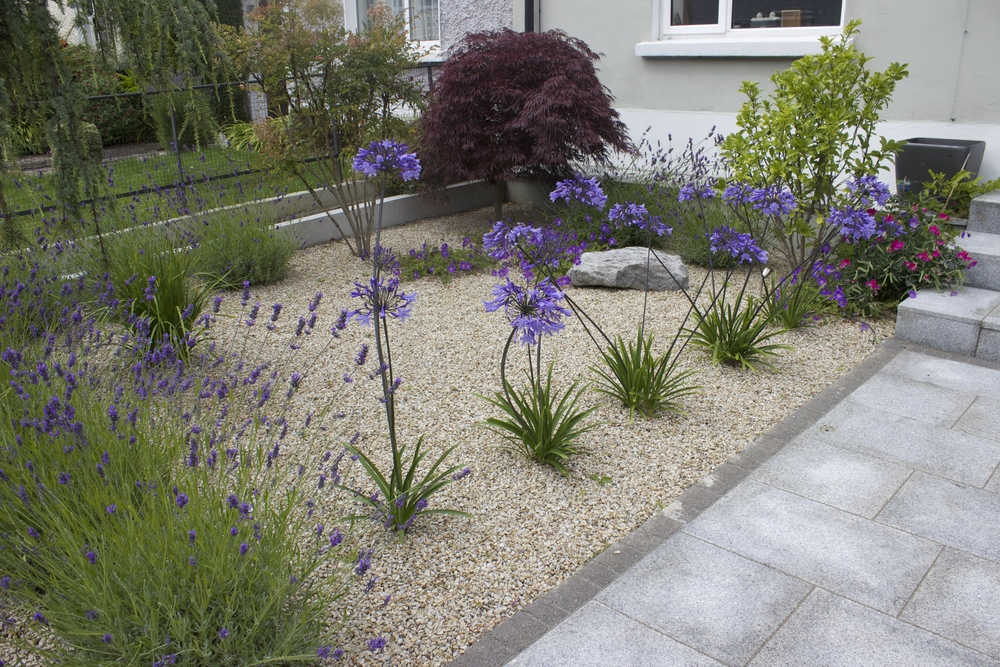 Ornamental planting in front Garden