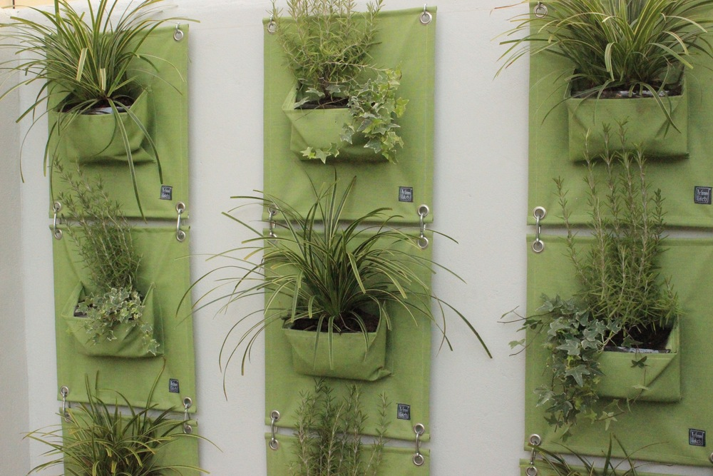 The Green Pockets - vertical planting made easy