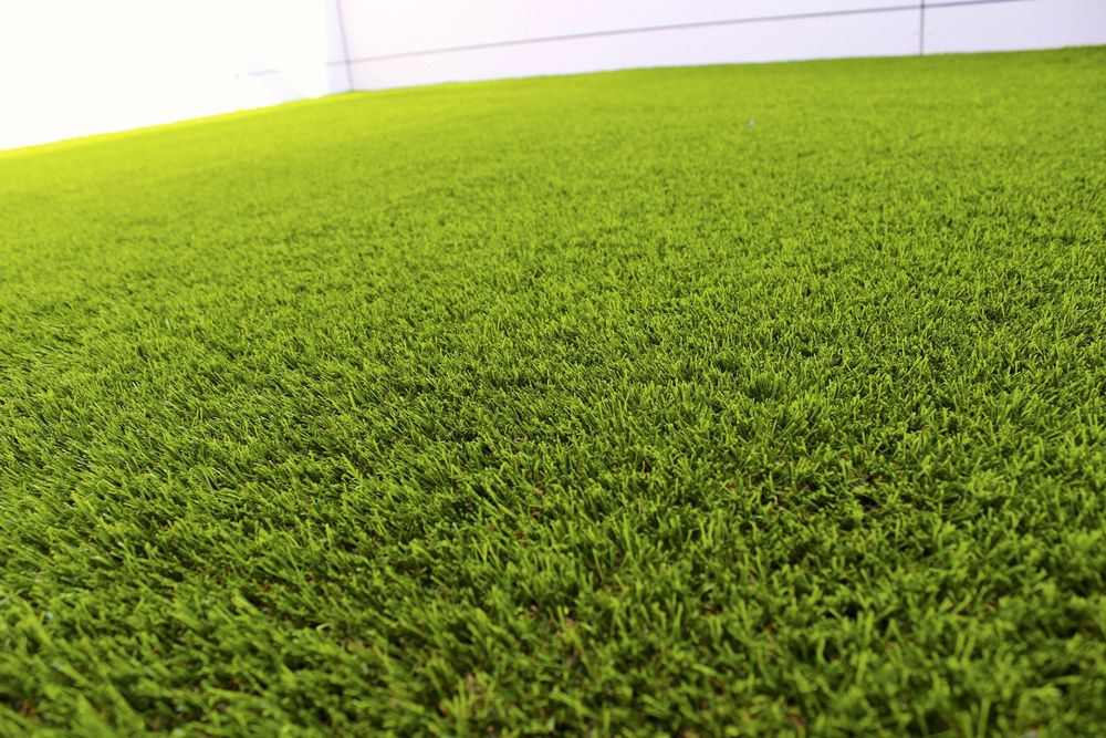 close up of turf