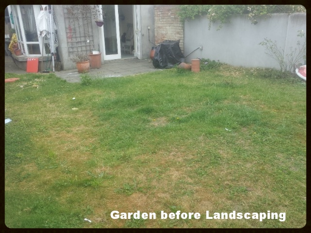 garden before landscape design
