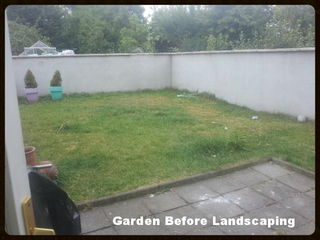 Garden before landscaping.jpg