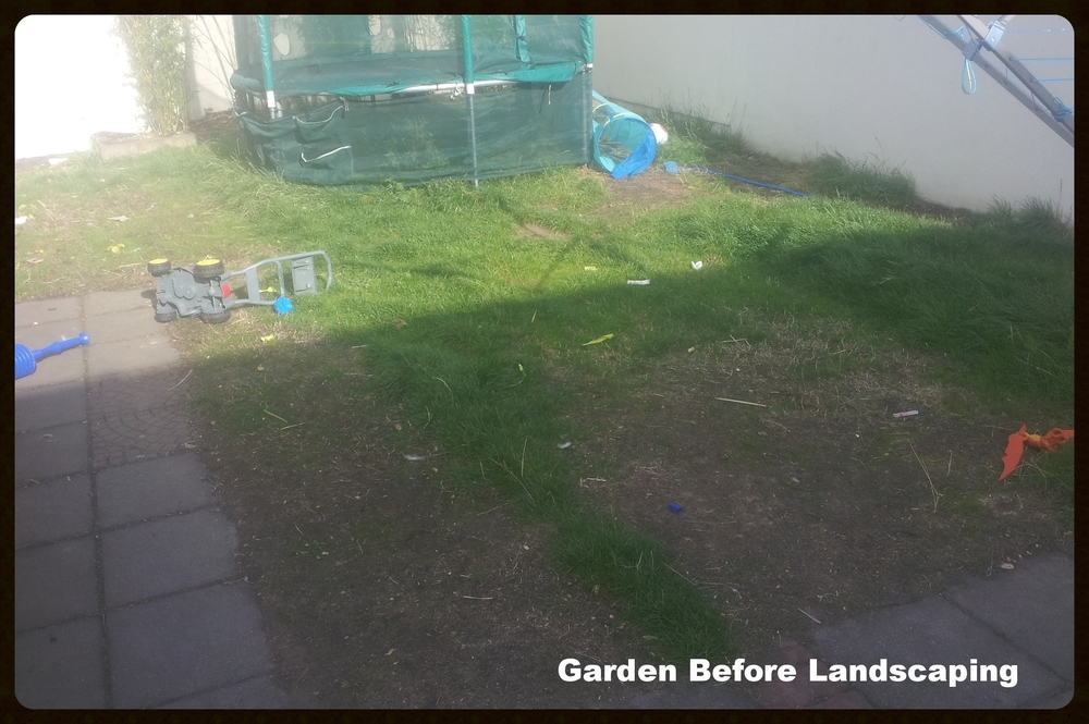 Messy Garden before Landscape transformation