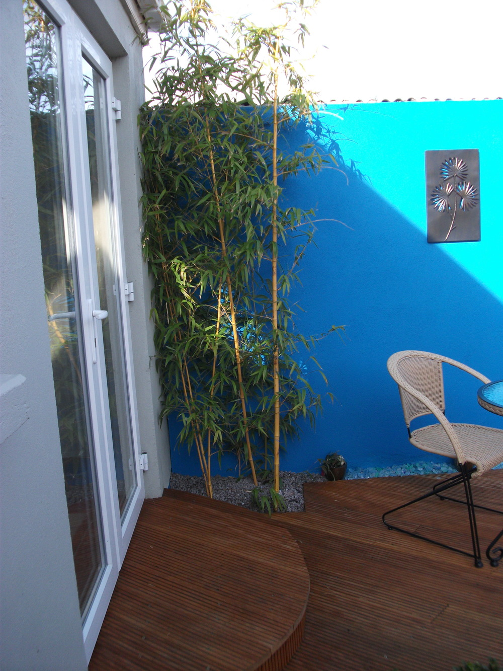 bamboo and blue wall.JPG