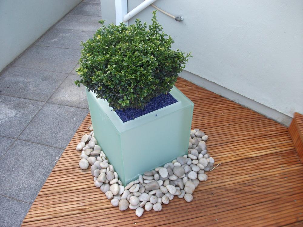 LED planter