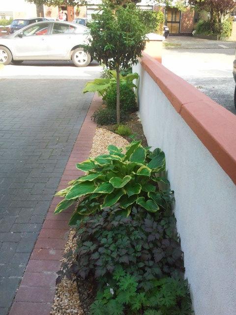 front garden Design driveway
