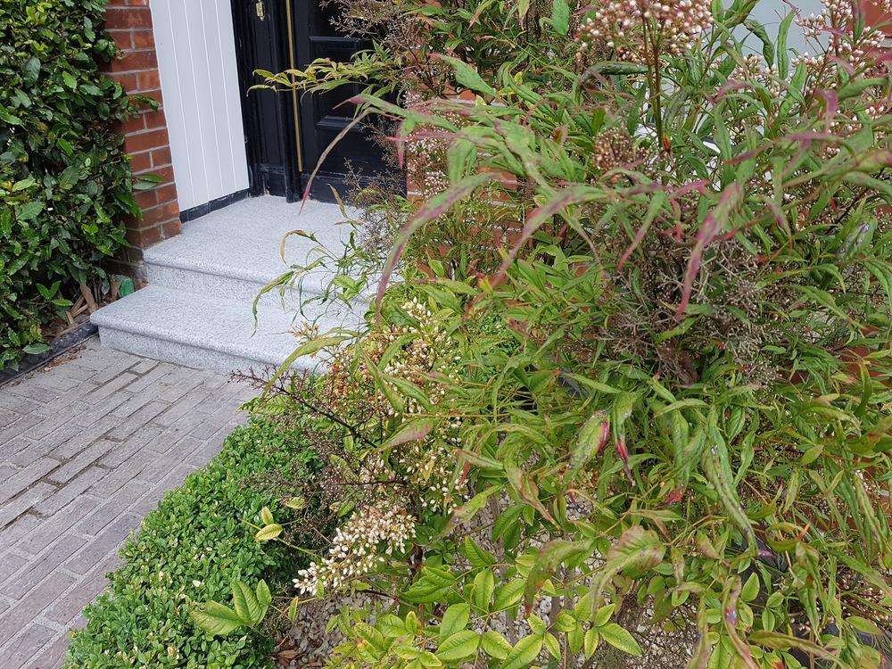 front garden doorstep.jpg