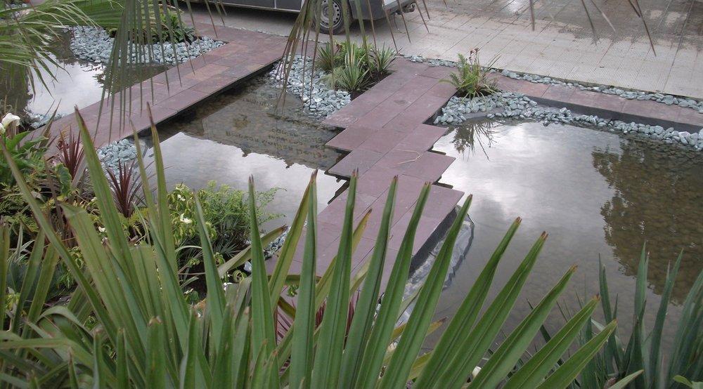 show garden pond dublin.JPG