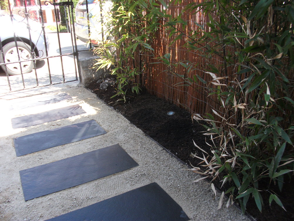 front garden dublin 6.JPG