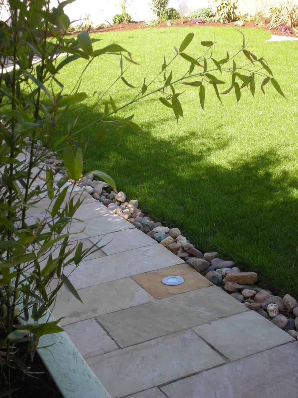 back garden dublin.JPG