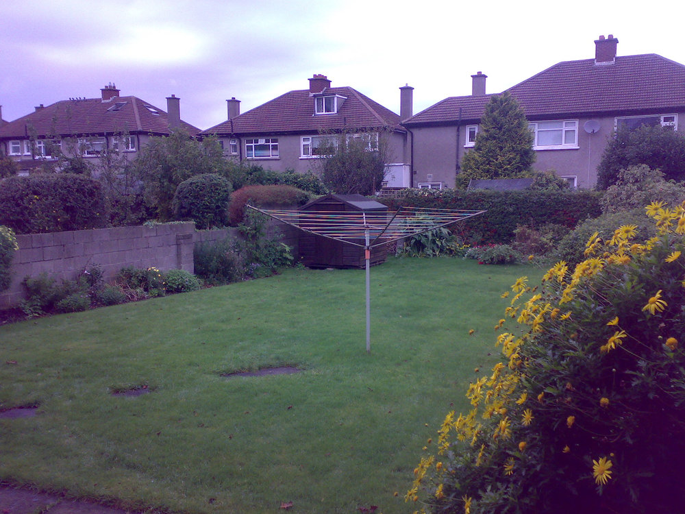 Back garden before.jpg