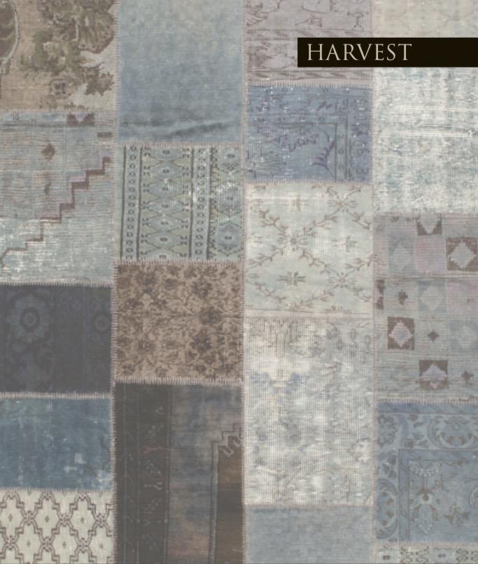 HARVEST COLLECTION  Harvest