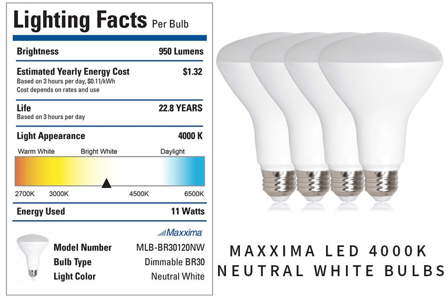 Neutral-Light-Bulbs-Perfect-For-Art-Studio.jpg