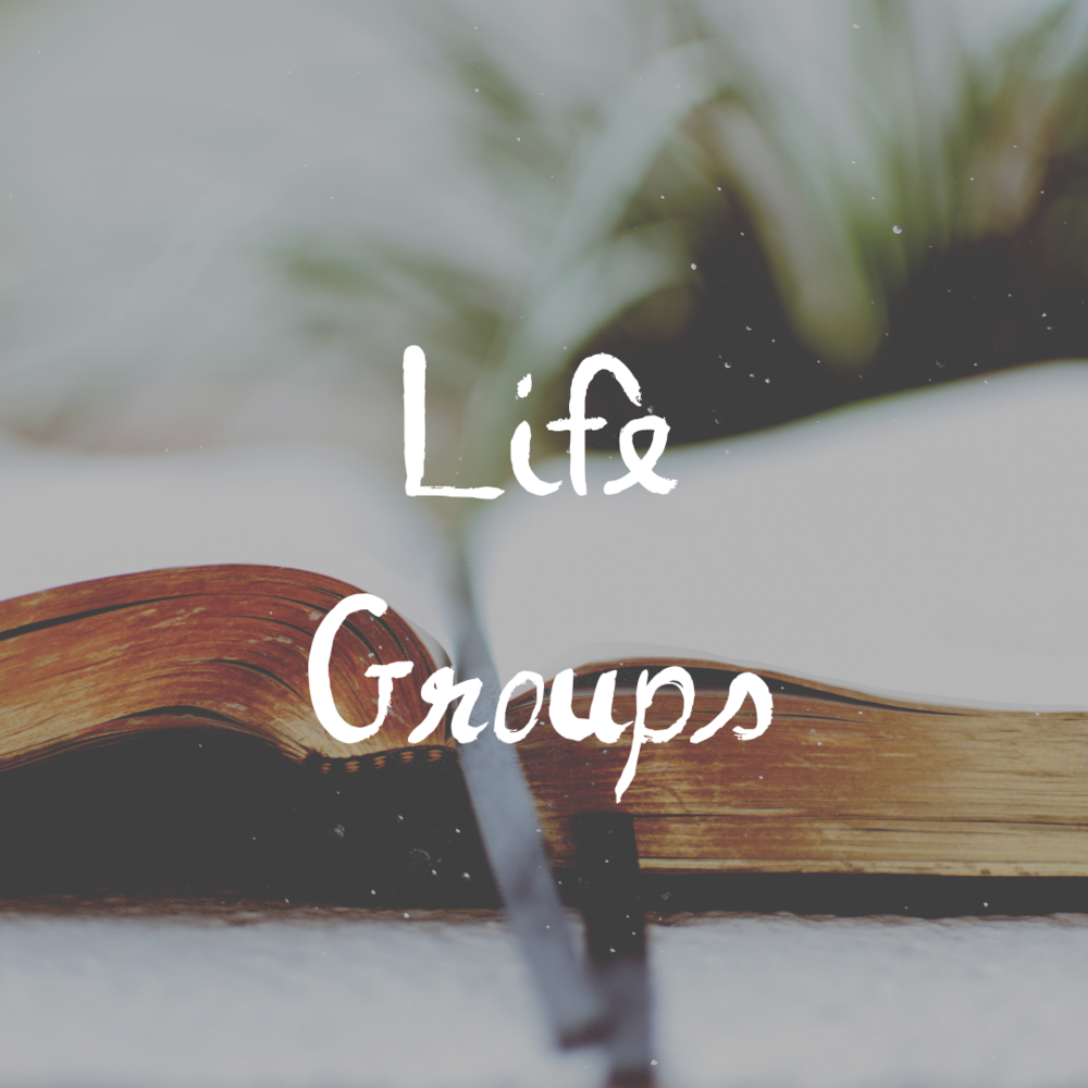 If you are interested in diving into the transforming word of God, or may have some questions about the Word, our Life Groups at CLC are a great opportunity. Each group opens up the Bible, and reads and reflects upon the content of each lesson to further understand, and to apply it to our daily living. Our life groups operate in the warm, friendly homes of our leaders around different areas in the city. If you are interested in finding a life group near and convienient you, please contact us.