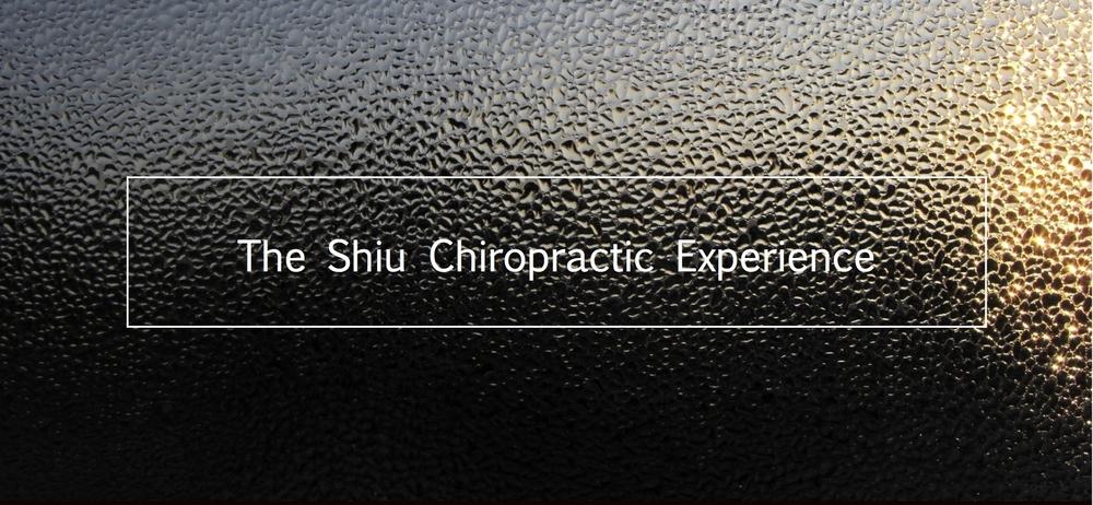 theshiuchiropracticexperience.jpg