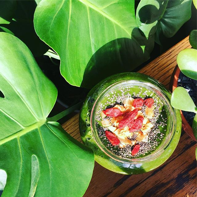 Green smoothies are a great way to start the day! #getyourgreens #vitamix #gojiberries #coconut #chaiseeds #greeneverything