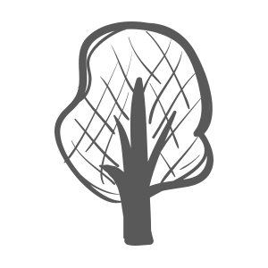drzewo.png