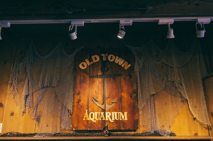 kake-best-digital-marketing-chicago-old-town-aquarium-6.jpg