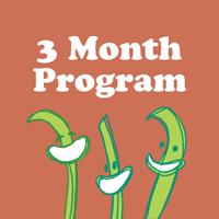 3-month-program