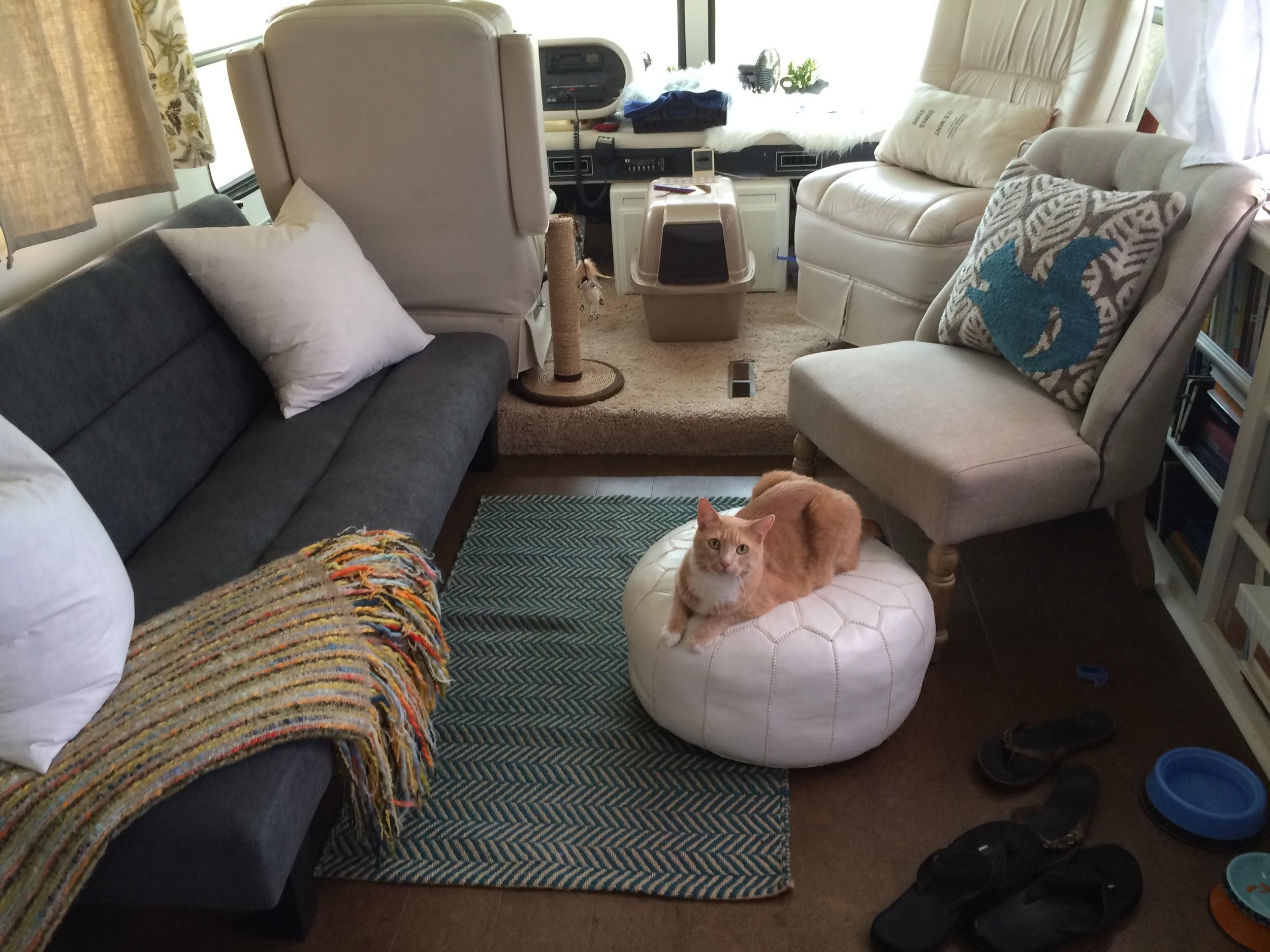 new futon