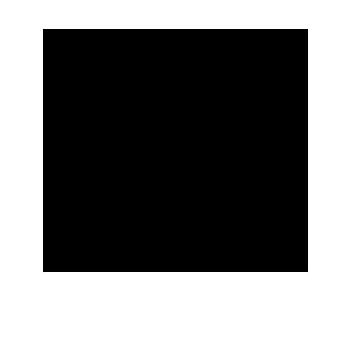 noun_740524_cc copy.png
