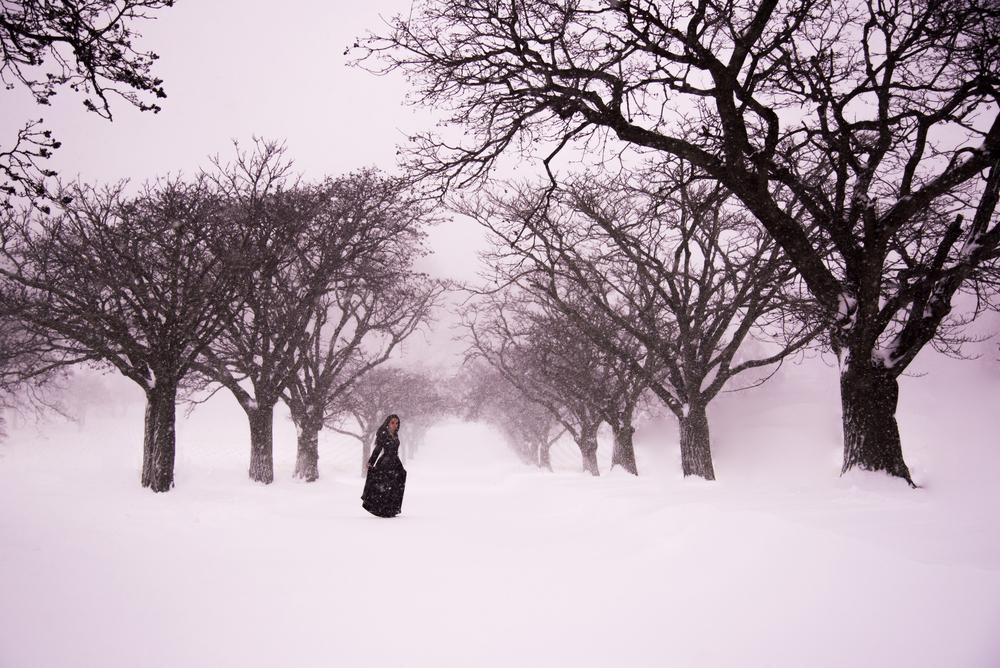 blizzardjonas