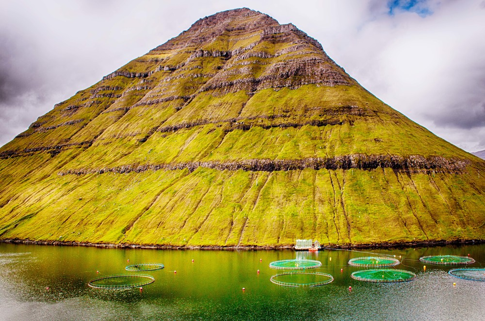 Faroe Islands Salmon Fishing II