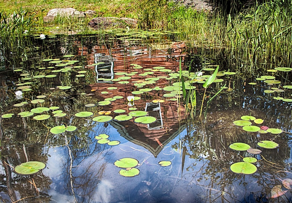 Cottage and Water Lillies