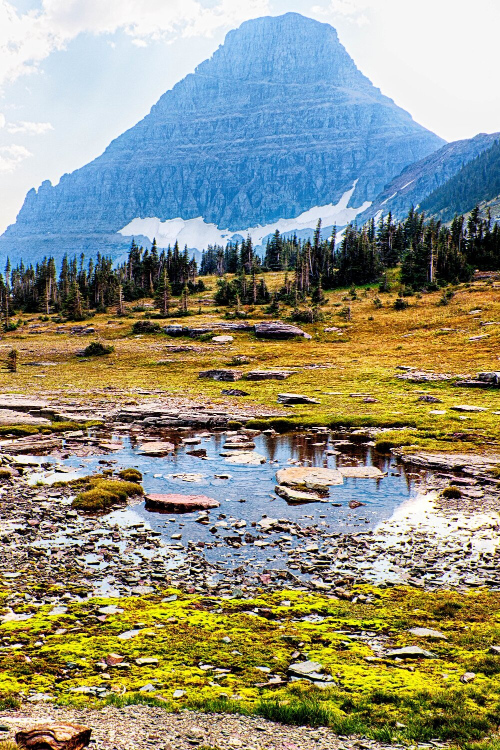 Logan Pass Reflectiion