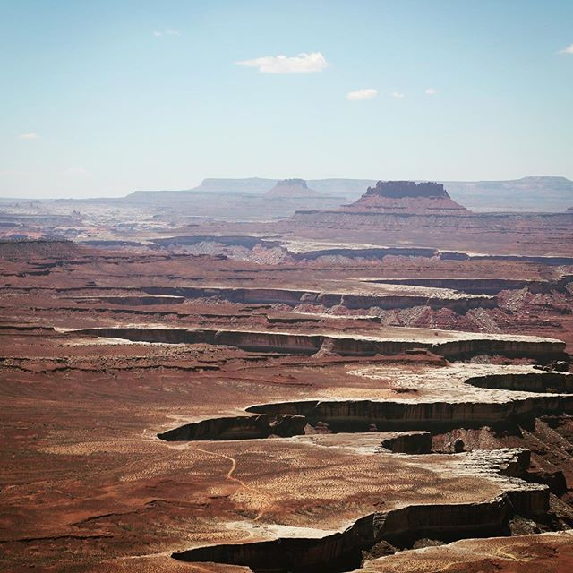 This is what thirsty for a million years looks like. . . . #utah #utahisrad #canyonlands #gooutdoors #hiking #camping #jeep #jeeplife