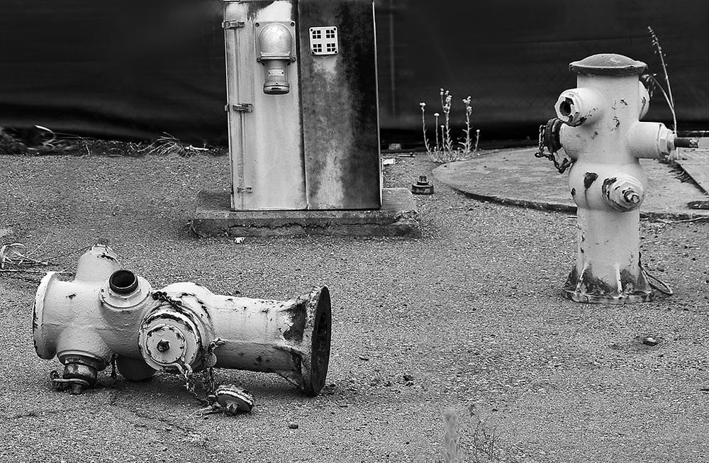 Fallen Comrade, Alameda, CA 2011