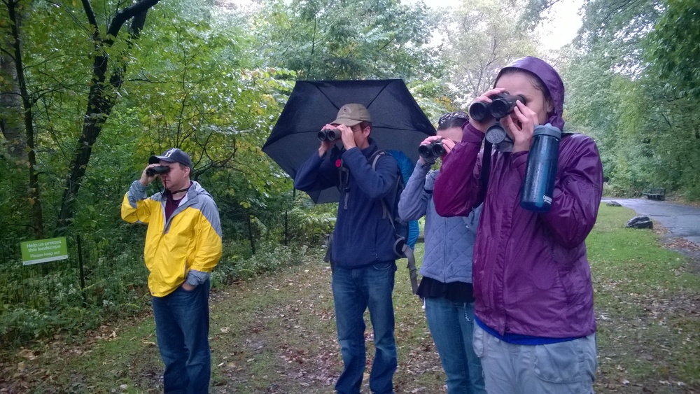 Fall Migration in Central Park with ornithologist Dr. Bert Harris - October 11