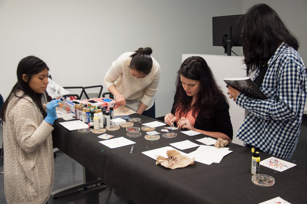 Maggot Art with entomologist Dr. Jennifer Rosati - October 29